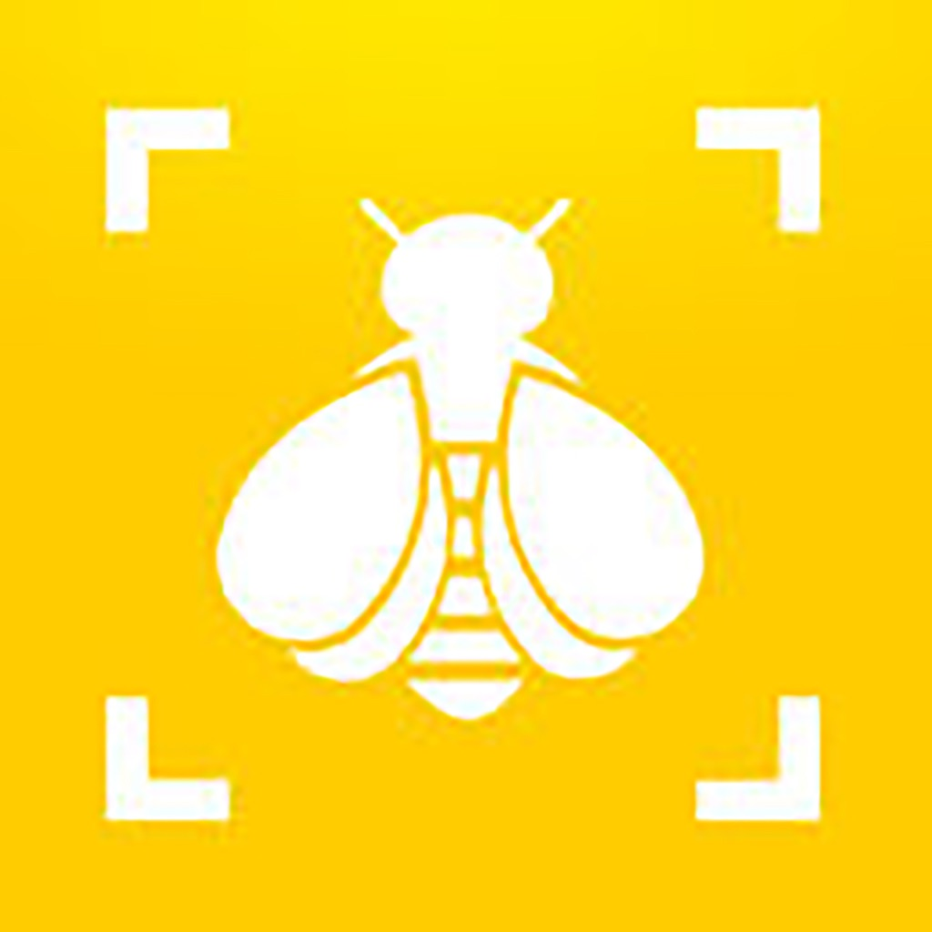 Bumble Bee Watch App Data & Review - Reference - Apps