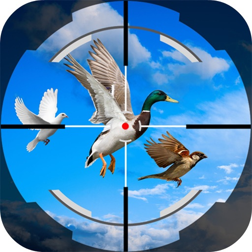 Shoot Fly Bird 3D