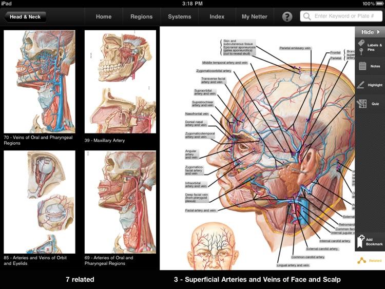 Netter's Anatomy Atlas