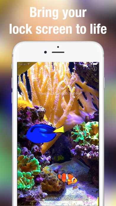 Aquarium live bakgrundsbilder på PC