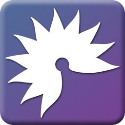 Soenia™ Epilepsy Diary