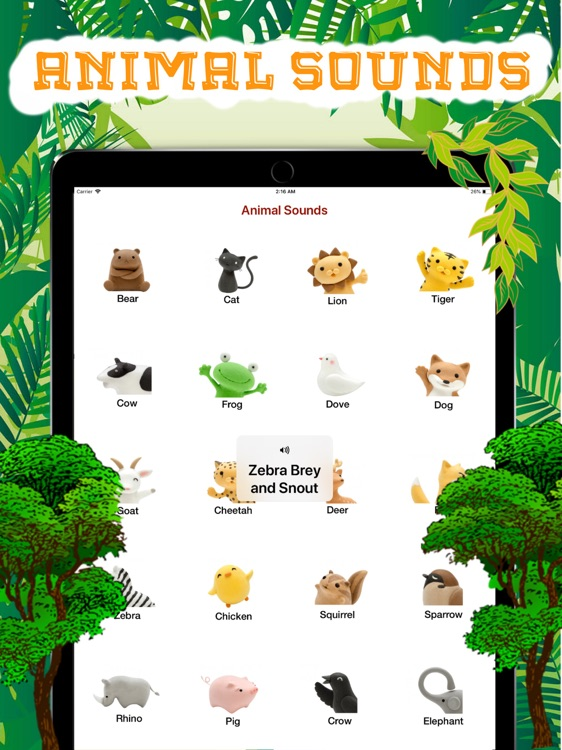Jungle Animal Sounds.