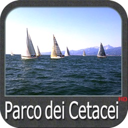 Ligurian Sea Cetacean Chart HD