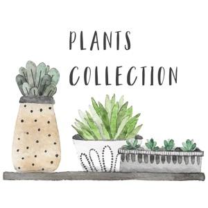 Watercolor Plants Stickers