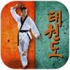 Taekwondo Pro
