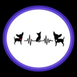 DogChat