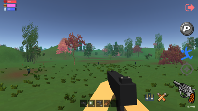 Chicken Dinner Survival Zone screenshot one