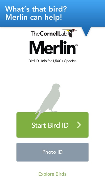 Merlin Bird ID by Cornell Lab screenshot-0