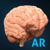 AnatomyAR+ for Merge Cube - Hybrid Medical Animation