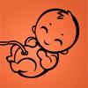 Gravid - Dag for Dag