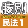 辰已の肢別本 H29版(2018年対策) 憲民刑