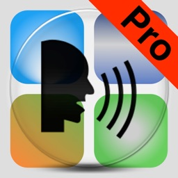 Dictate Pro - Talk to text