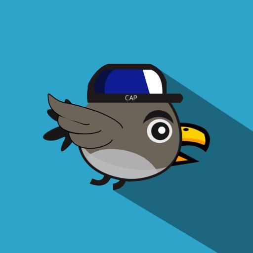 Flap Bird Rio iOS App