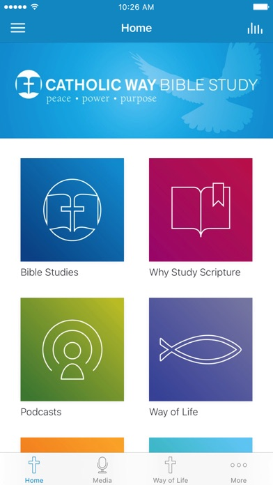 Catholic Way Bible Study screenshot 1