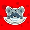 Cute Raccoon Sticker Pack!