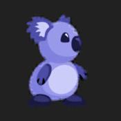 Kave Koala
