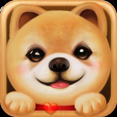 Activities of Dog Sweetie