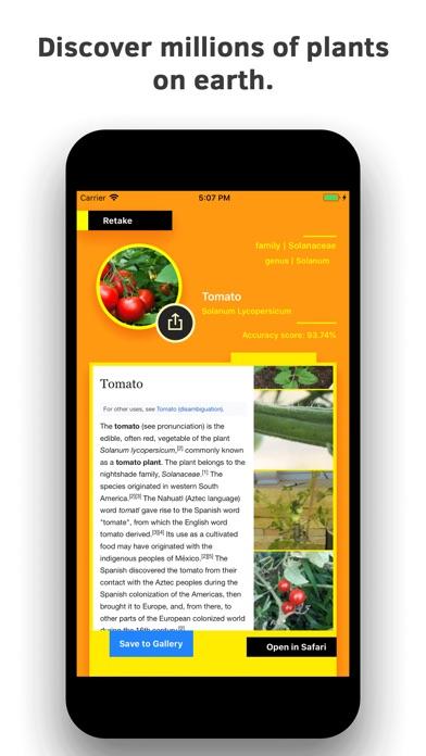 Plant Identification screenshot 2