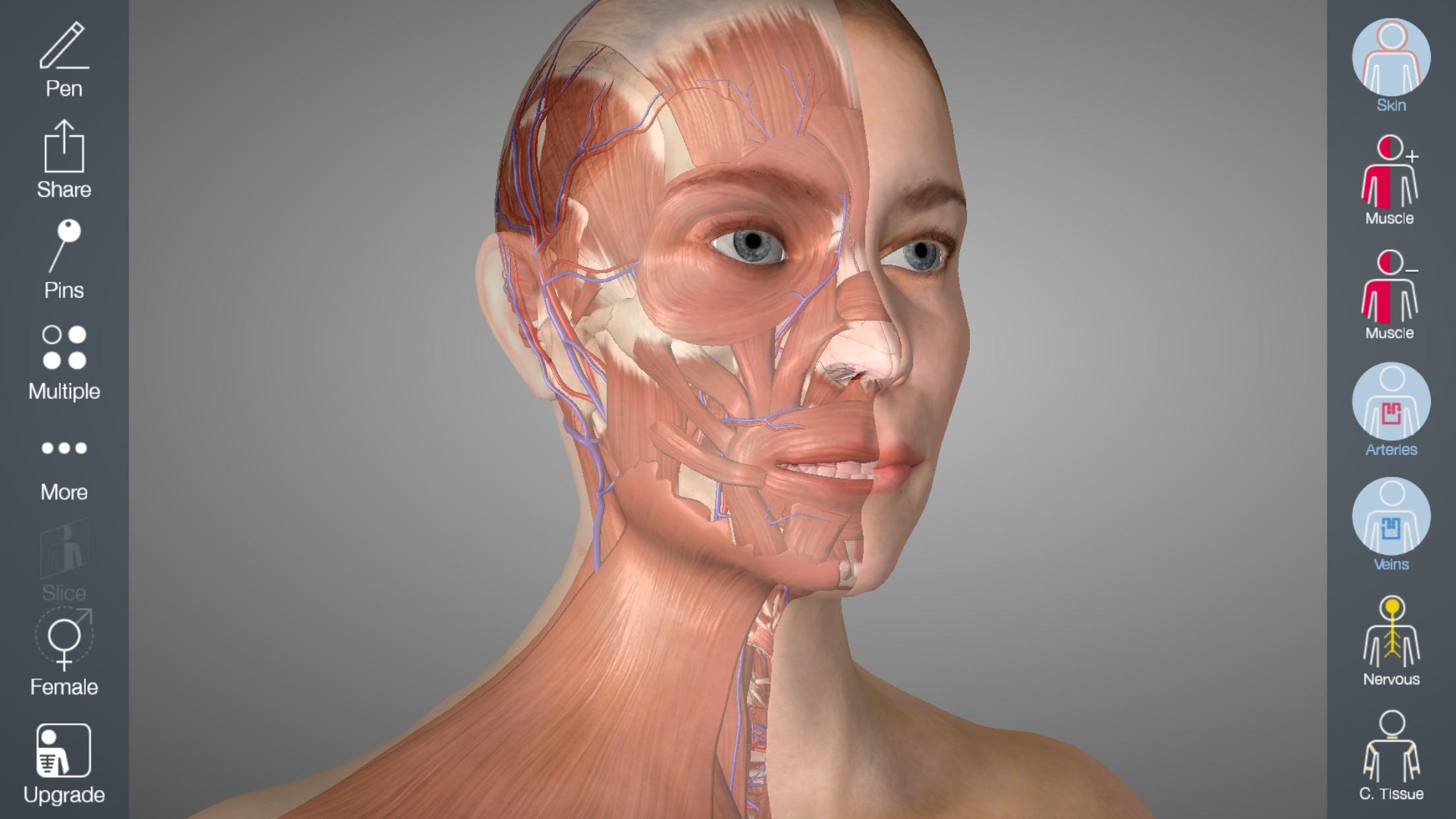 Essential Anatomy 5 Screenshot