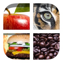 Close Up Pics 2 - Trivia Games