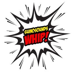 Whips™
