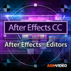Editor Course for AfterEffects - Nonlinear Educating Inc.