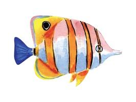 Watercolor Sea Life Emojis