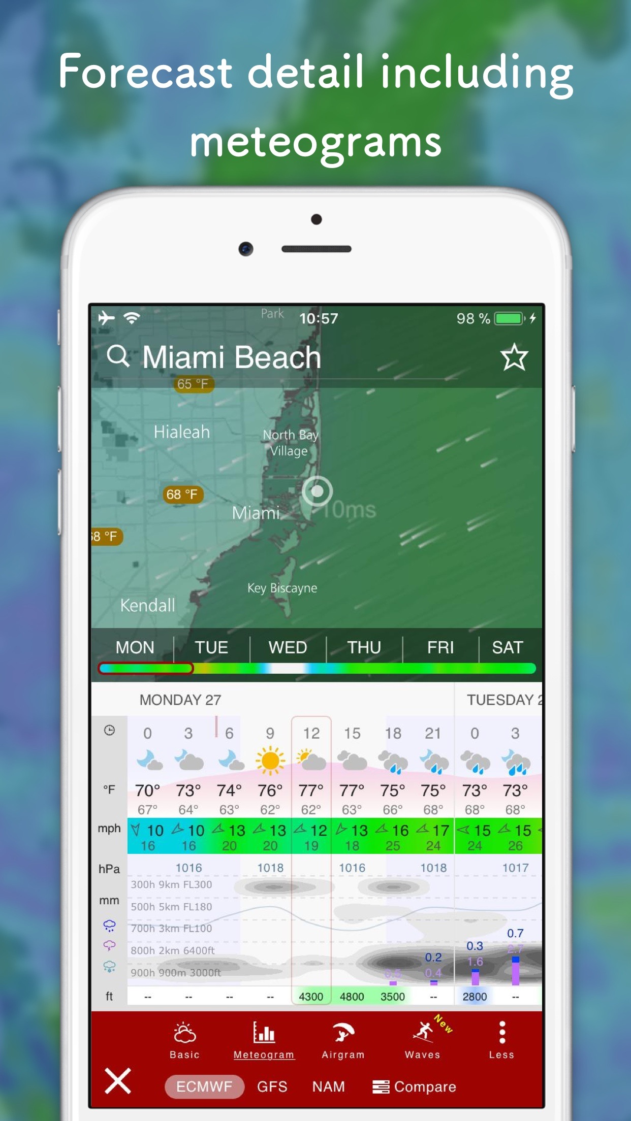 Windy: wind and waves forecast Screenshot
