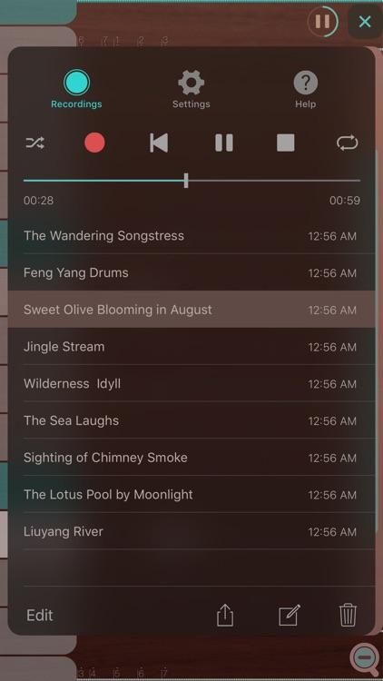 iGuzheng™ Pro screenshot-4