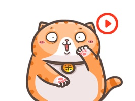 Chubby Cat Stickers Animated