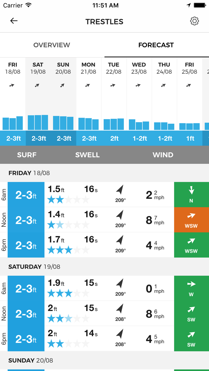 MSW Surf Forecast Screenshot
