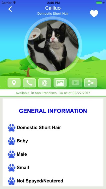 Feline Finder - When Adopting