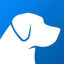 Simba – For Social Dogs