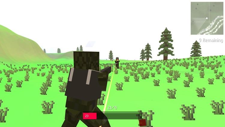 Block Warfare Battle Royale screenshot-4