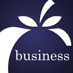 Apple FCU Business for iPad