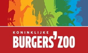 Zoo at home