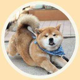 Funny Akita-Inu Stickers