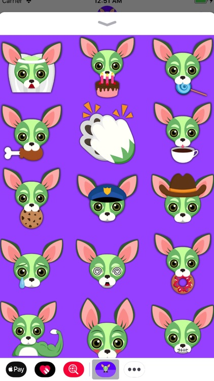 Saint Patrick's Day Chihuahua screenshot-4