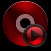 DVD Ripper-DVD Copy Ripper DVD - ZHANG SHITAO