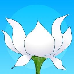 Lotus Bud Meditation Timer