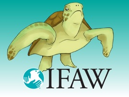 FAW's mission is to rescue, rehabilitate  and release animals into safe, healthy landscapes around the world