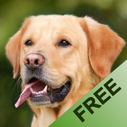 Animalsounds for Kids - FREE