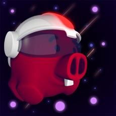 Activities of Space Piggy