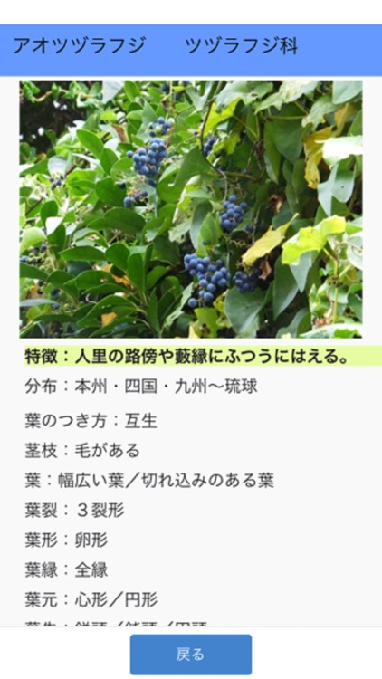 街野植物図鑑 screenshot-6
