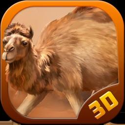 Camel Race : Desert Adventure