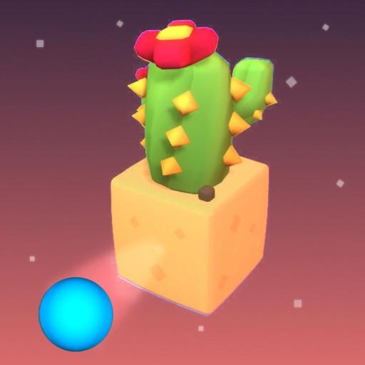Cactus Balls 3D