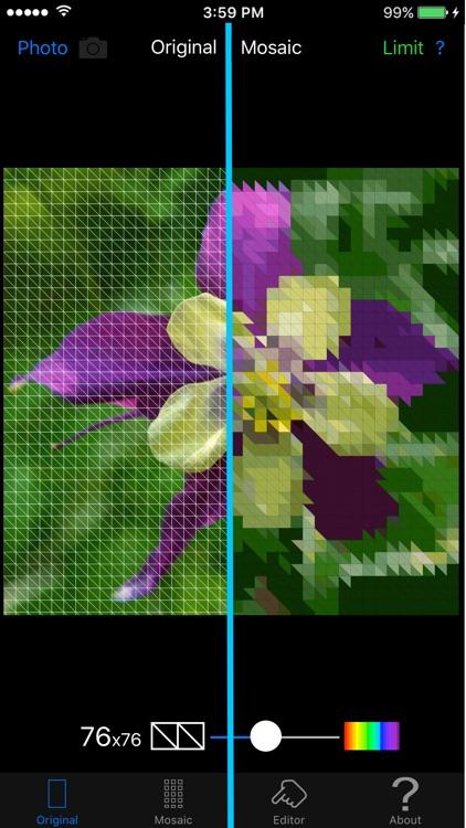 Color Hints Mosaic screenshot-0