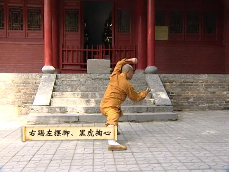 少林迷踪拳