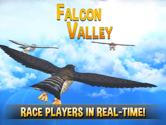 Falcon Valley Multiplayer Race на iPad