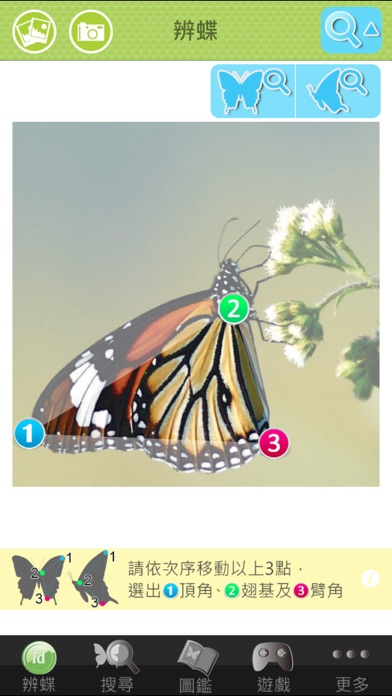 BUTTERFLY id screenshot two